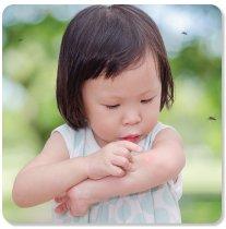 Bug Bites Allergic Reaction