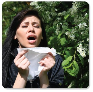 Allergies or Illness – Get the Answers You Need Today